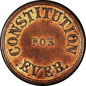 Constitution Design